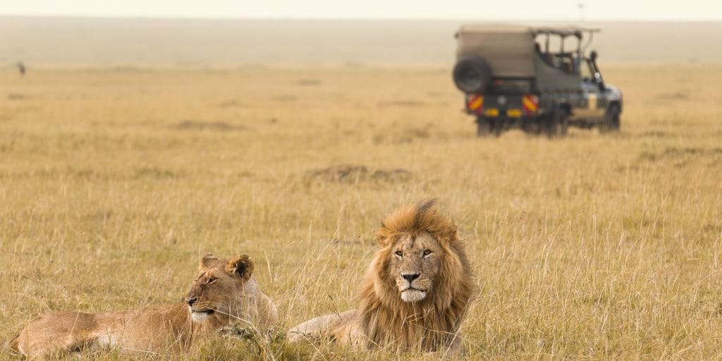 Win safari Weekend van de Klant