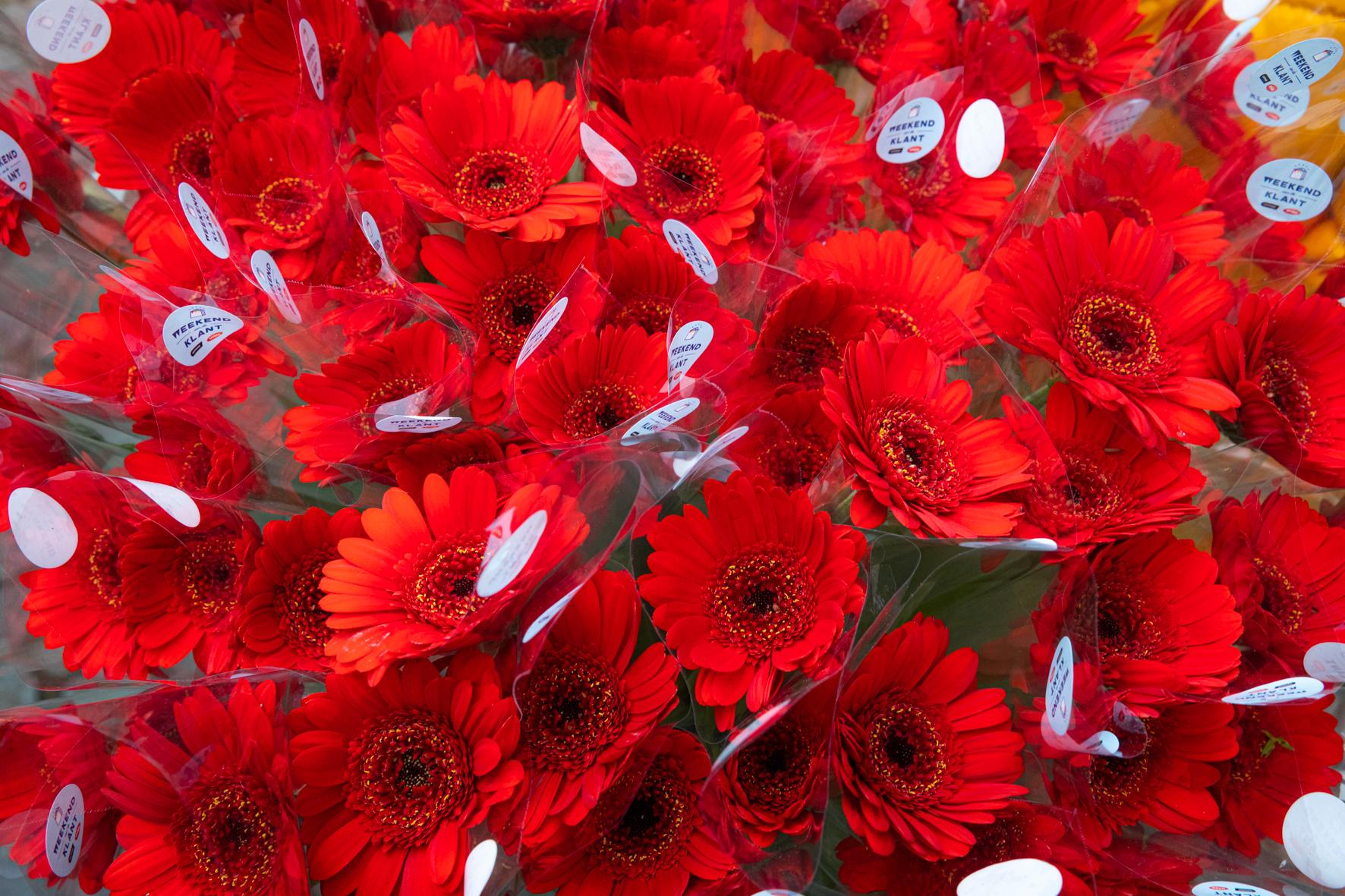 20191005 Weekend van de Klant Leuven bloemen-foto Luk Collet-3723-1